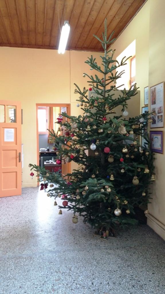 το δέντρο μας ...στολισμένο !!!
